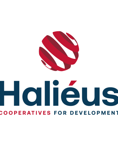 A new visual identity for Haliéus